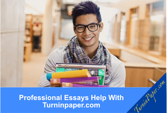 General English Essays  Independence Day Essay In English also Top English Essays Help With Essay Writing  Essay Writing Help Learning English Essay Writing