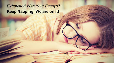 term paper writer term paper writing service term paper writer